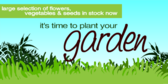 time-to-plant-your-garden
