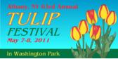 Spring Tulip Parade