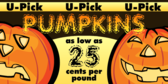 Banner Designs for Vendors Selling Pumpkins, Corn Stalks and More 6