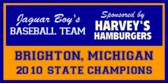 School Boys Basketball Banner Design