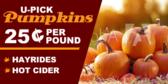 u-pick-pumpkins-with-hayride-cider