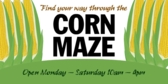 Corn Fields and Mazes Design 2