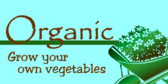grow-your-own-vegetables
