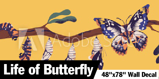 Life of A Butterfly Kids Wall Decal