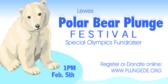 polar-bear-plunge-festival