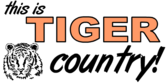 This is Tiger Country Banner Design