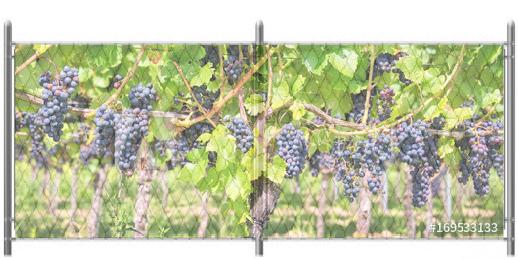 5x12 Vinyard Vines