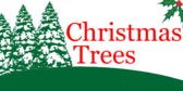 Christmas Tree Sign &: Banner Designs