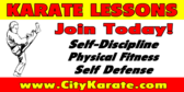 karate lessons banner sign template